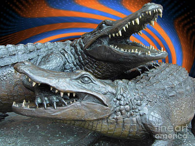 Photograph - Dueling Gators In Blue And Orange by D Hackett