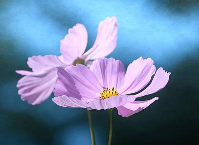 Photograph - Duet In Pink 2 by Fraida Gutovich