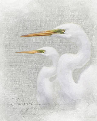 Photograph - Duet by Karen Lynch