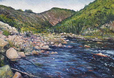 Painting - Duivenhoks Dam Heidelberg South Africa 2016 by Enver Larney