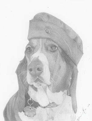 Drawing - Duke Dog Drawing by Dave Nevue
