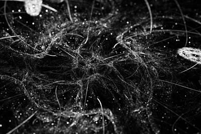 Digital Art - Dull Suffering by Sleepless Monk