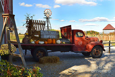 Indiana Photograph - Dulls Tree Farm In Fall  by Amy Lucid