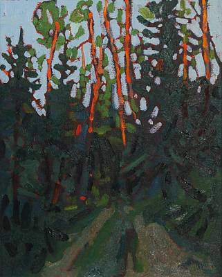 Painting - Dumoine Sunrise Spruce by Phil Chadwick