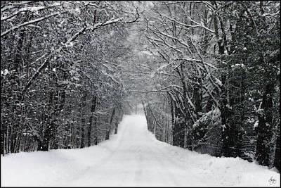 Photograph - Dump Run On A Snowy Day by Wayne King