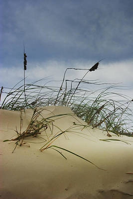 Randall Nyhof Royalty Free Images - Dune and Beach Grass Royalty-Free Image by Randall Nyhof
