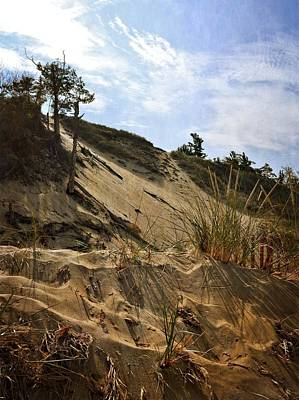 Photograph - Dune And Blue Sky by Michelle Calkins