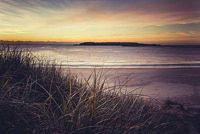 Photograph - Dune At Fishermans Beach Port Kembla by Bradley Rasmussen
