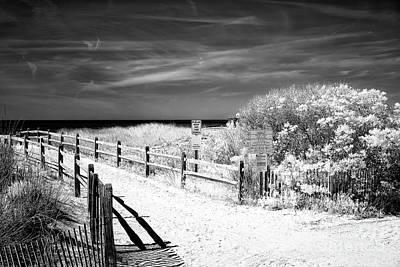 Photograph - Dune Comfort by John Rizzuto