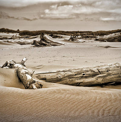 Photograph - Dune Country by Bonnie Bruno