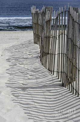 Photograph - Dune Fence Shadows by Debra Fedchin