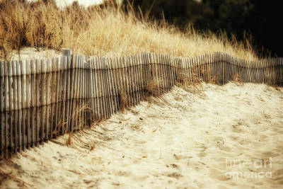 Photograph - Dune Fence by Tamera James