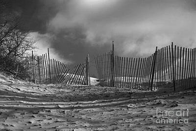 Indiana Dunes Photograph - Dune Fence by Timothy Johnson