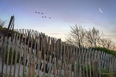 Dune Fences Art Print by Brian Wallace