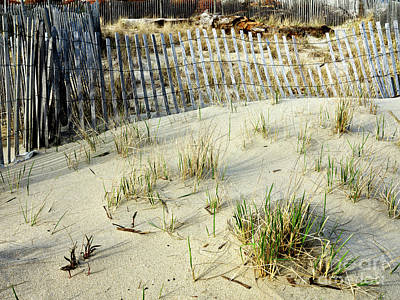 Photograph - Dune Grass At Asbury Park by John Rizzuto