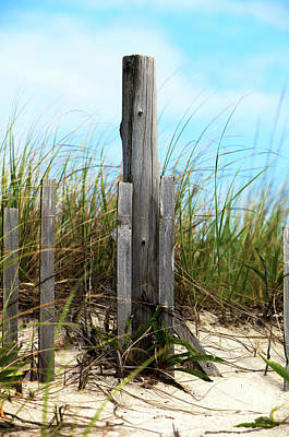 Photograph - Dune Grass At Holgate Beach by John Rizzuto