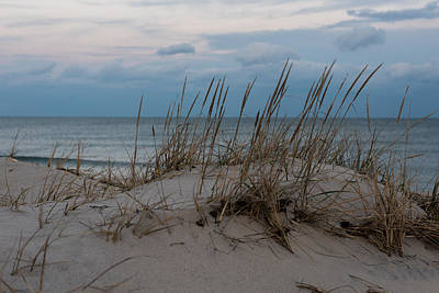 Photograph - Dune Grass Lavallette New Jersey by Terry DeLuco