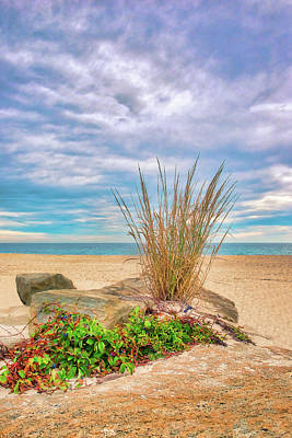 Photograph - Dune Grass On The Rocks by Gary Slawsky