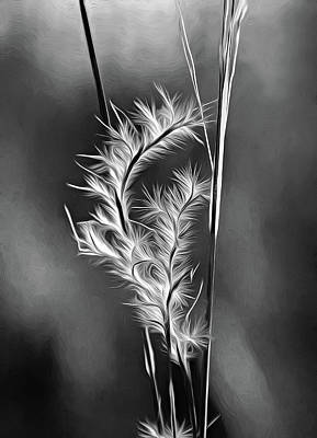 Sauble Photograph - Dune Grass - Paint Bw by Steve Harrington