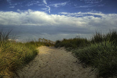 Photograph - Dune Grass by Pete Federico