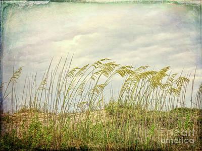 Photograph - Dune Grasses - Jekyll Island Georgia by Kerri Farley