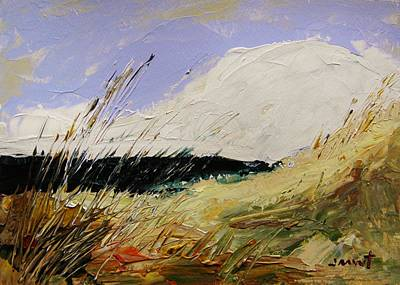 Beach Landscape Drawing - Dune Grasses by John Williams