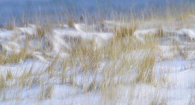 Photograph - Dune Grasses Snowscape by Marty Saccone