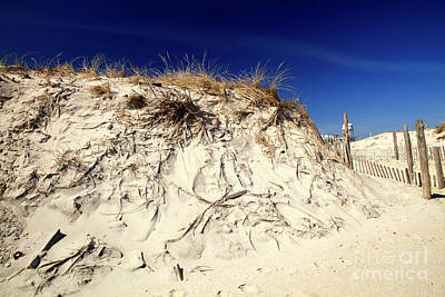 Photograph - Dune Heights On Long Beach Island by John Rizzuto