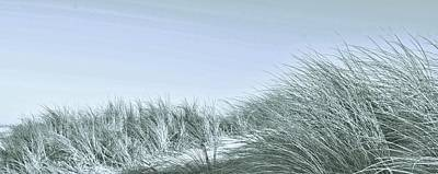 Photograph - Dune Impressions by Werner Lehmann