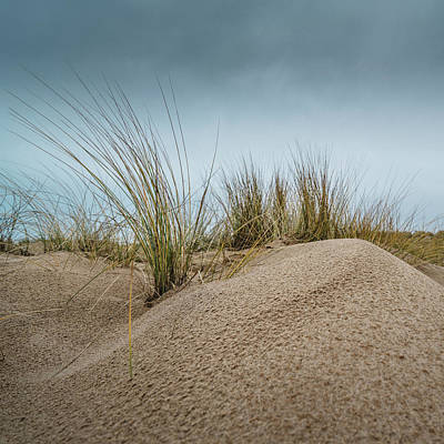 Photograph - Dune by James Billings