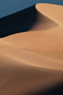 Photograph - Dune Lines by Michael Blanchette
