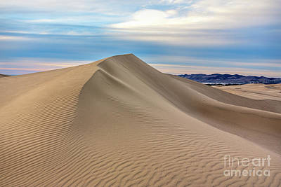 Photograph - Dune by Mimi Ditchie