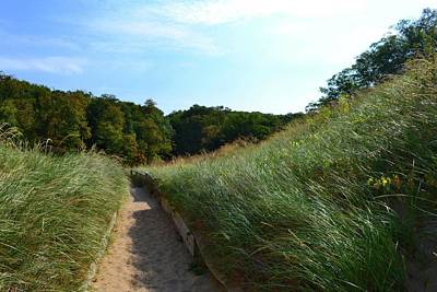 Photograph - Dune Path At Laketown by Michelle Calkins