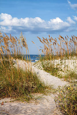 Dune Pathway At The Beach Art Print by Dawna  Moore Photography
