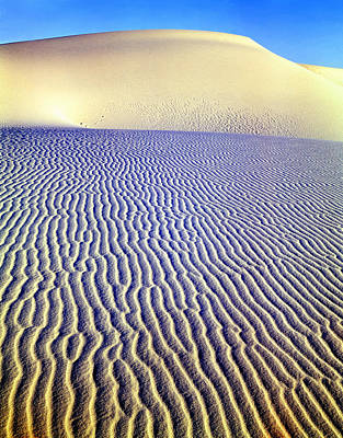 Photograph - 214825-dune Patterns  by Ed  Cooper Photography