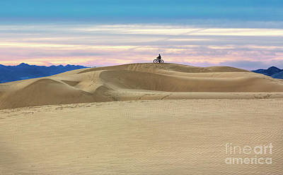 Photograph - Dune Rider by Mimi Ditchie