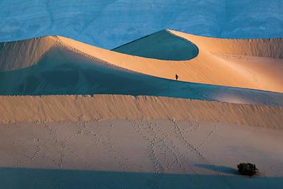 Photograph - Dune Runner by Joe Doherty