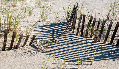 Photograph - Dune Shadows by Cathy Kovarik
