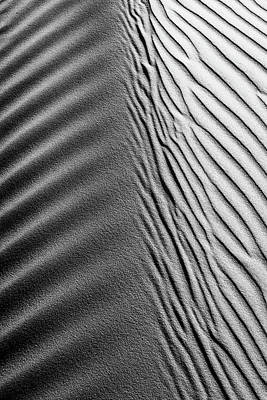 Photograph - Dune Spine by Lace Andersen