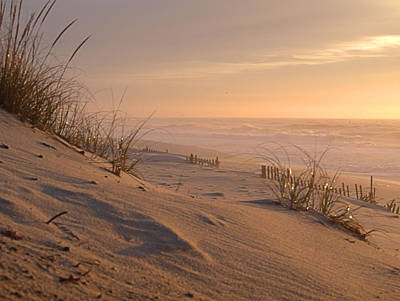 Photograph - Dune View by  Newwwman