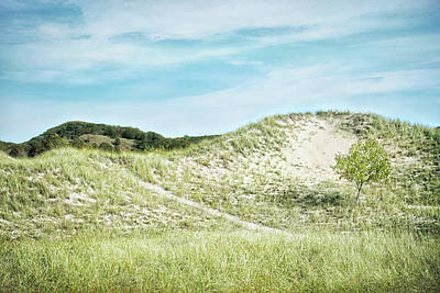 Photograph - Dune Walk by Kathi Mirto