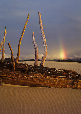 Photograph - Dunebow by Robert Potts