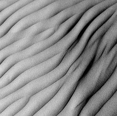 Photograph - Dunes 15 by Mihai Florea