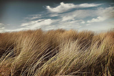 Photograph - Dunes And Clouds by Mihaela Pater