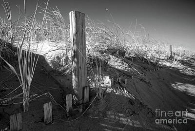 Photograph - Dunes And Fencing II by Mary Haber