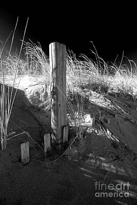 Photograph - Dunes And Fencing by Mary Haber