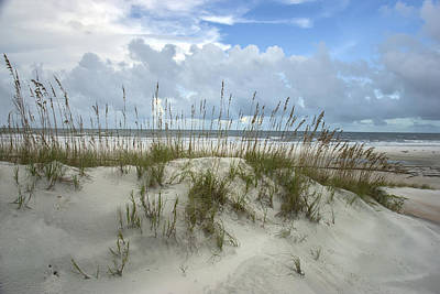Photograph - Dunes And Sea Oats by Lauren Brice