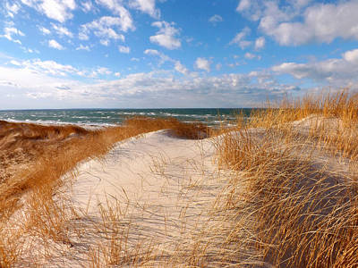 Mayflower Beach Photograph - Dunes In Winter by Dianne Cowen