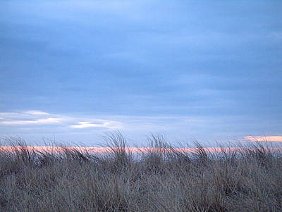 Photograph - Dunes by  Newwwman