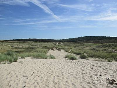 Photograph - Dunes Of Schoorl by Chani Demuijlder